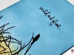 Bird Set Free - Wild and Free Card