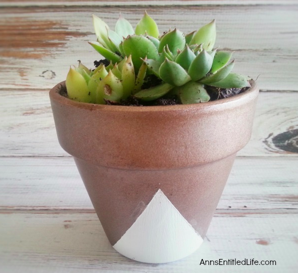 This DIY, West Elm Inspired Succulent Planter is a great way to bring summer inside all year round!