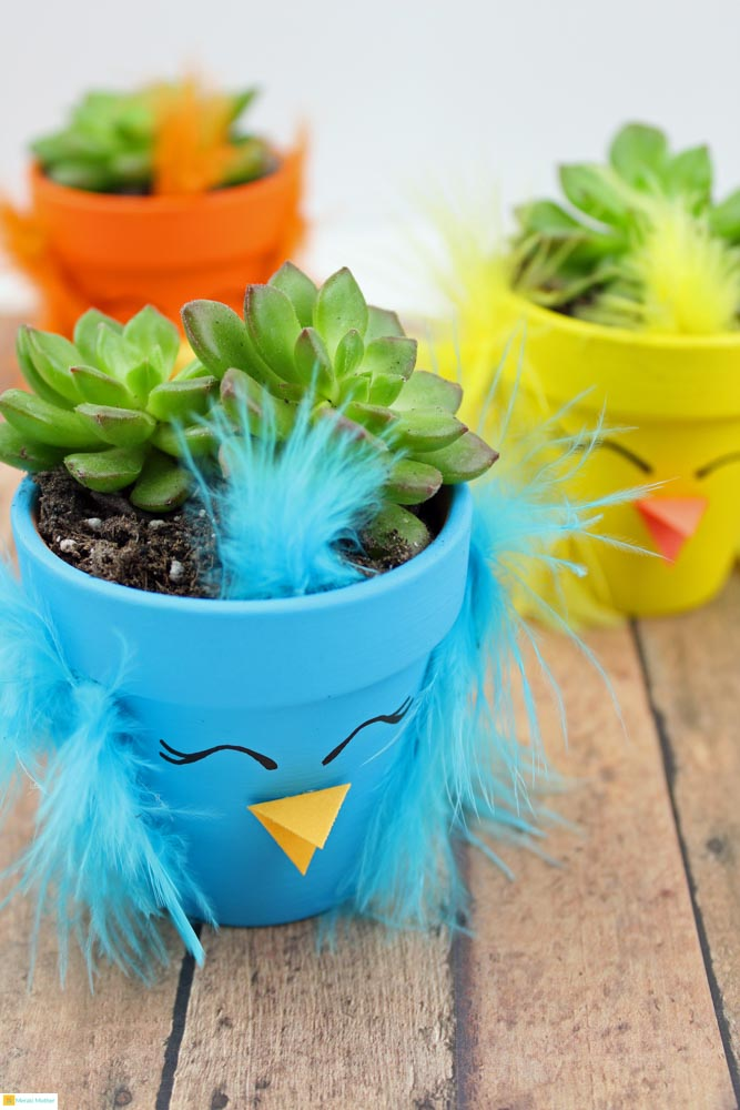 These cute Spring Chick Succulent Planters are the perfect spring craft project for kids.