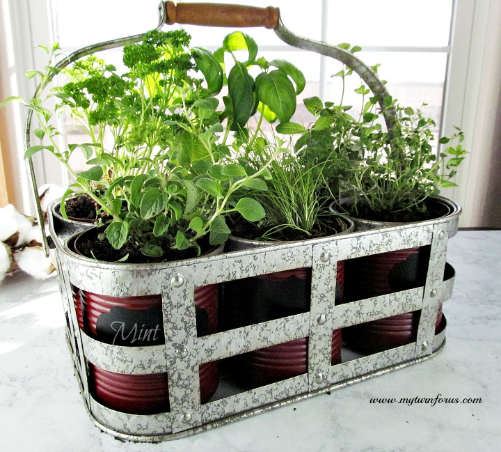 This DIY Indoor Herb Garden Kit is easy and inexpensive and you can enjoy fresh herbs all year!