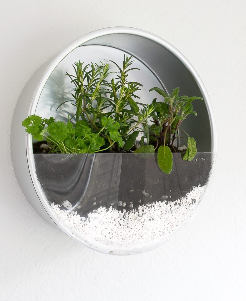 Repurpose/upcycle your old baking tins and make a herb planter for your kitchen!