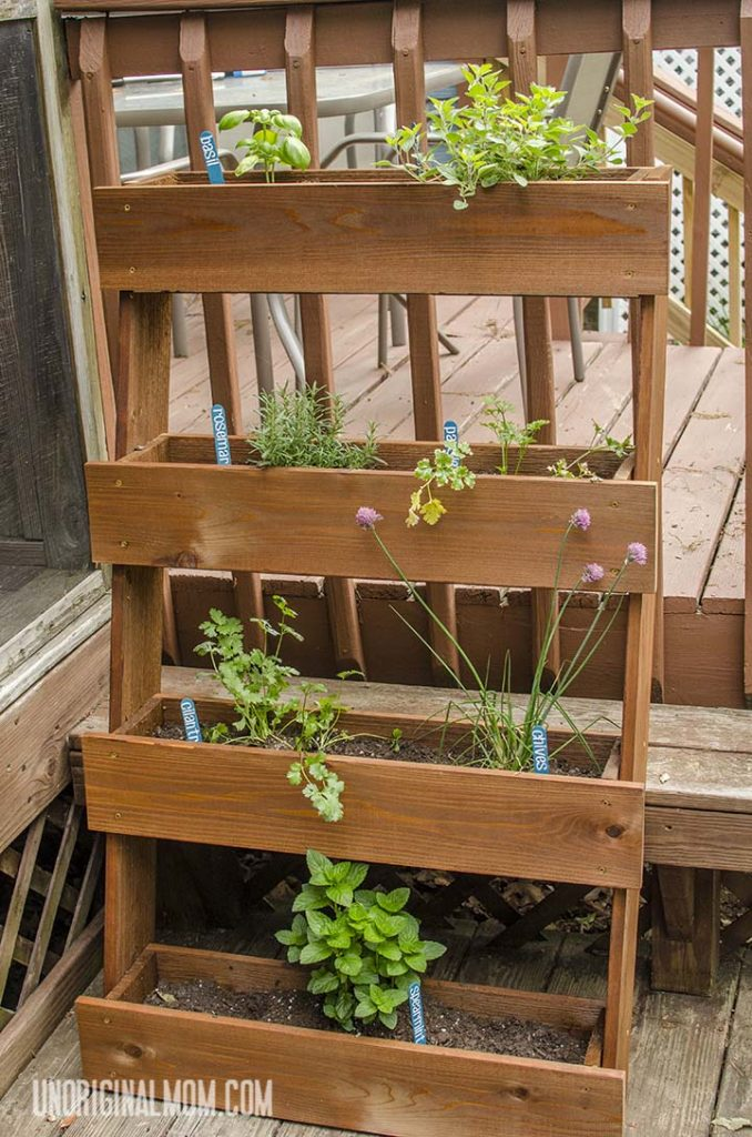 If you're short on space, this wood herb garden is a great alternative to the traditional windowbox herb garden!