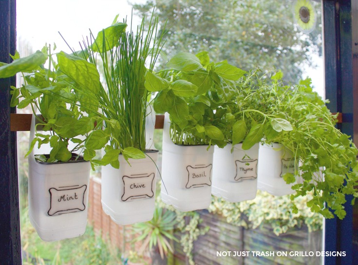 This hanging herb garden is also agreat way to declutter the kitchen counters. Start saving those milk containers today!