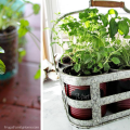 15 Fabulous DIY Herb Garden Ideas That Are Perfect For Beginners