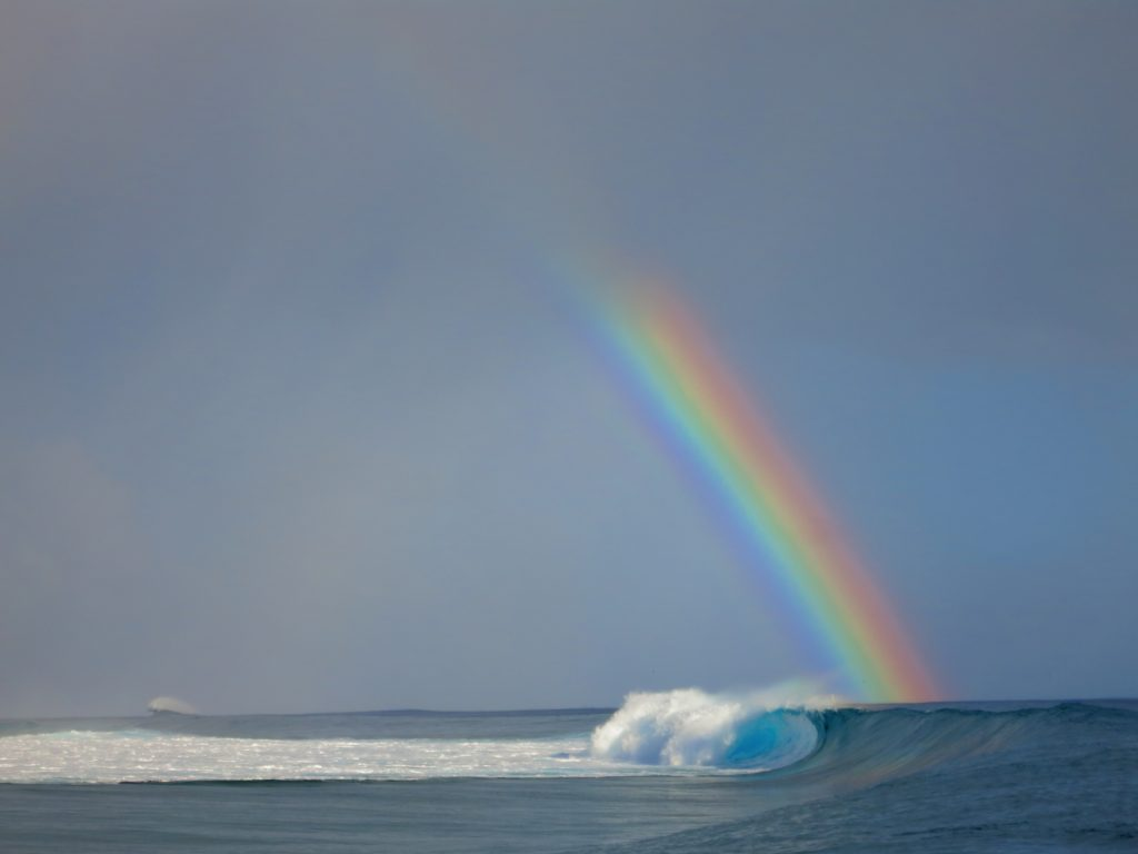17 Best Rainbow Captions and Quotes To Bring Color To Your Pictures